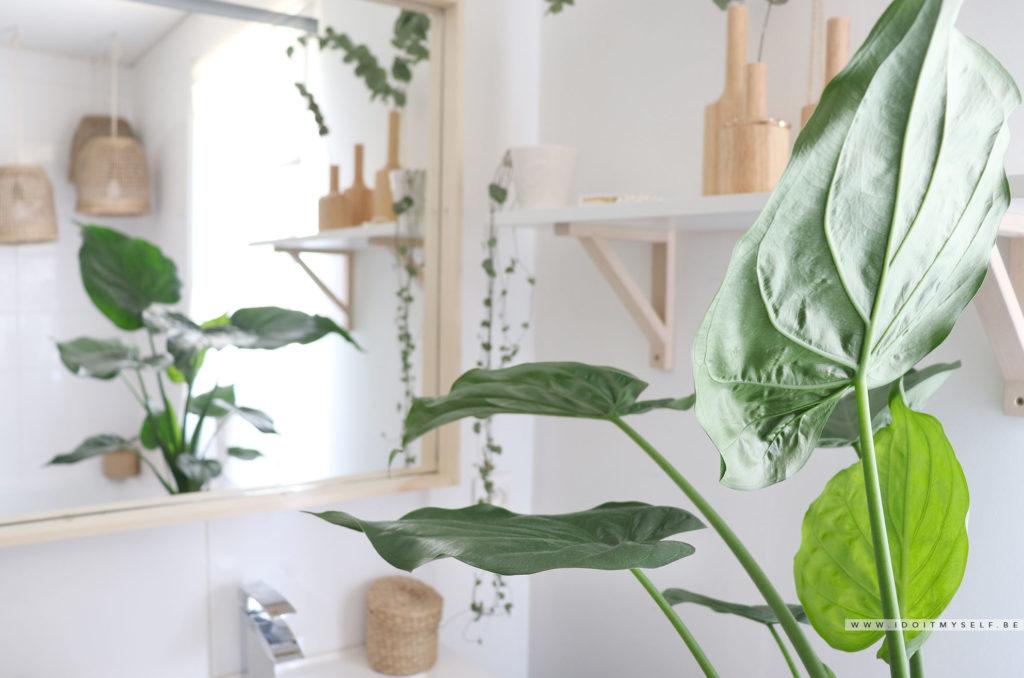 deco vegetale